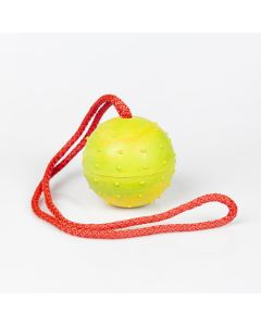 Rubber Ball for Dog Training | Arrak Outdoor